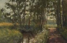 De Reest en het pad